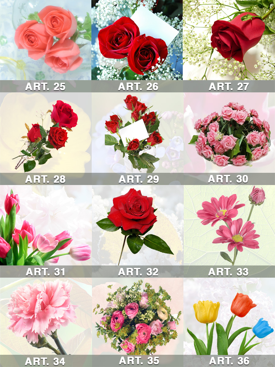 catalogo Fiori e piante da 25-a-36